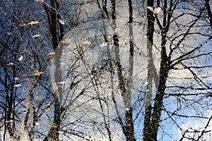 Reflection Of Autumn Royalty Free Stock Photography - Image: 26622027
