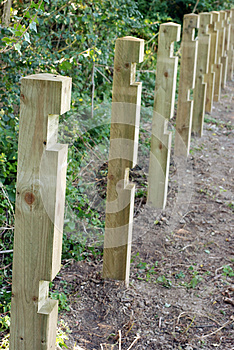 Fence Posts In A Row. Royalty Free Stock Images - Image: 26649409