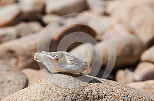 Brittany Abstract Royalty Free Stock Image - Image: 26673486