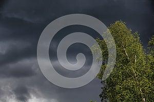 Thunderclouds. Tree. Stock Photos - Image: 26687953