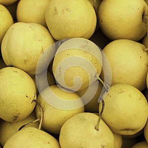 Pears Royalty Free Stock Photos - Image: 26749598