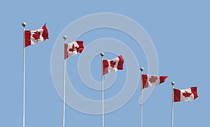 Five Canadian Flags On Poles Isolated Stock Images - Image: 26777394