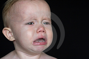 Crying Toddler Free Stock Images