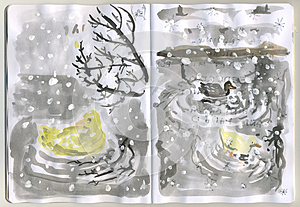 Painted Sketchbook - Ducks Stock Photography - Image: 26801272