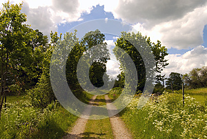 Summer Path Royalty Free Stock Images - Image: 26814739