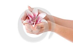 Beautiful Woman Hands Stock Photos - Image: 26828533