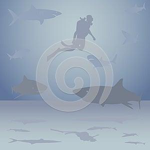 Diver Among Sharks Stock Photo - Image: 26922340