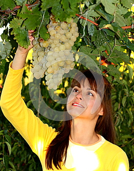 Woman With Grape Royalty Free Stock Images - Image: 26950959