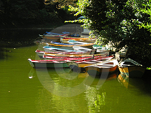 Small Lake On A Park With Boats Stock Photo