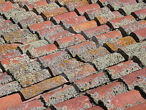 Spanish Shingles Royalty Free Stock Photos - Image: 278108
