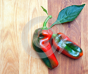 Two Peppers Royalty Free Stock Photo - Image: 27000225