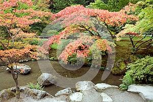 Autumn Charm In Japanese Garden Stock Photos - Image: 27059003