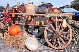 Autumn Vegetables Stock Photo - Image: 27094330
