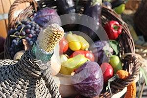 Havrecob- Och Höstgrönsaker Royaltyfri Foto - Bild: 27094585