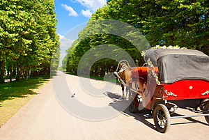The Invitation For Ride Stock Images - Image: 27134774