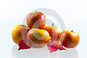 Apples With Wine Leaves Royalty Free Stock Image - Image: 27164796