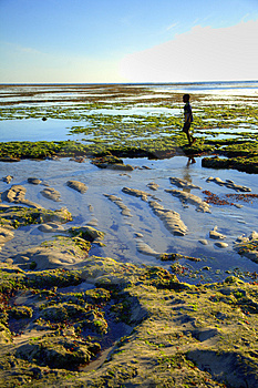 Boy Walking On The Beach Royalty Free Stock Photography - Image: 2721317