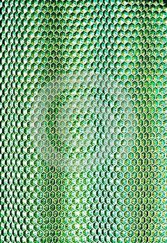 Honeycombed Plast- Royaltyfri Fotografi - Bild: 27247297