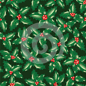 Holly Berry Leaves Royalty Free Stock Image - Image: 27281246
