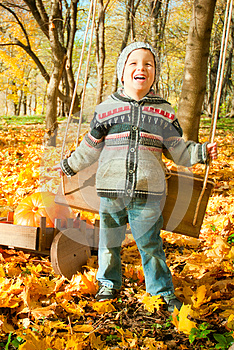 Excited Little Boy On A Swing Outdoor Royalty Free Stock Photography - Image: 27283147