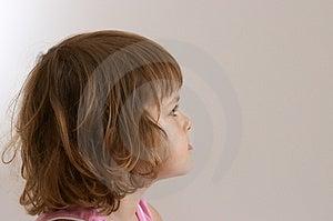 Girl Stock Image - Image: 2732731