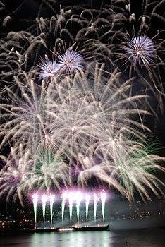 Purple Fireworks Free Stock Photography