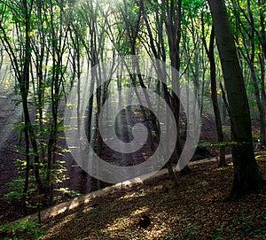 Light Beam Stock Photos - Image: 27470623