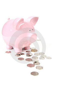 Pink Piggy Bank on white backg Stock Images