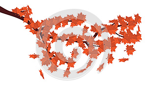 Red Maple Leaves Stock Images - Image: 27668974
