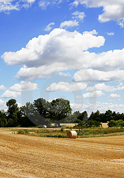 Straw Harvest Stock Photo - Image: 2776690