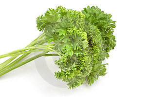 Bundle of parsley Stock Photography