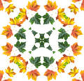 Autumn mandala Stock Images