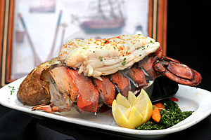 Broiled Lobster Reminiscing Stock Photos