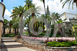 Palm Park In The Spanish Town Stock Photography - Image: 28012022