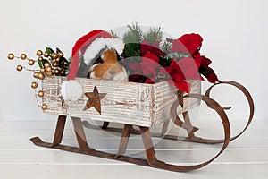 Santa Piggy Στοκ Φωτογραφία - εικόνα: 28035602