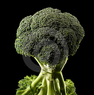 Broccoli Royaltyfria Foton - Bild: 2815468