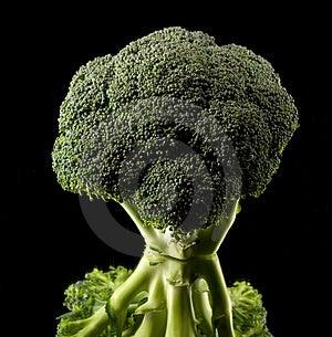 Broccoli Fotografie Stock Libere da Diritti - Immagine: 2815468