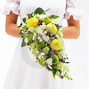 Bride and Bouquet-2 Stock Photos