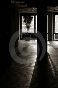 Shadows Royalty Free Stock Photo - Image: 2838095