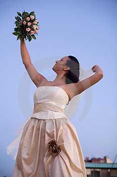 Bride And The Sky Stock Photos - Image: 2872743