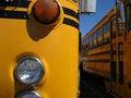 Details of a school bus