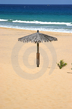 Lonely Sun Shade Stock Photo - Image: 2928960