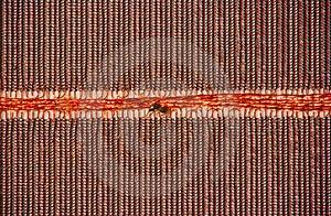 Ferrite Core Memory Stock Images - Image: 2940484