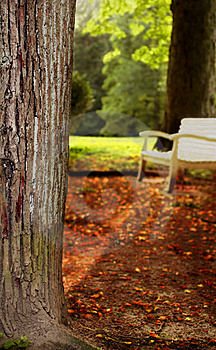 Silent Place Stock Image - Image: 2944811