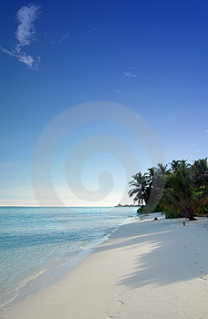 Tropical beach Free Stock Image
