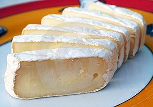 Cheese Free Stock Photo