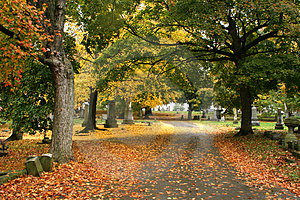 Fall in Nashville Royalty Free Stock Images