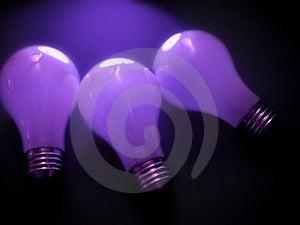 Bulbs 3 Royalty Free Stock Photography - Image: 30177