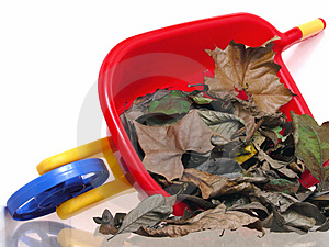 Toys: Plastic Wheelbarrel And Dry Leaves Free Stock Photography