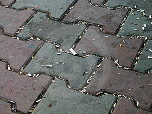 Dirty Street Stock Images - Image: 33604
